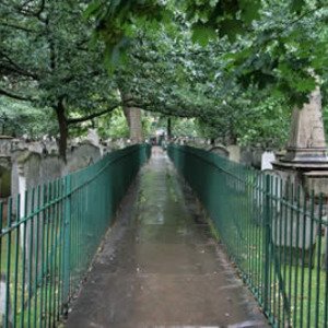 City Gardens Guided Walk: Wednesdays
